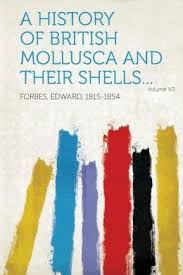 Image result for HISTORY OF BRITISH MOLLUSCA