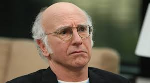 Image result for LARRY DAVID