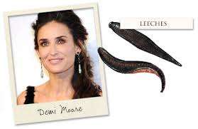 Image result for demi moore leeches